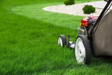 Trávník – obrázek majitele domu a zahrady