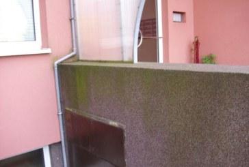 Plíseň fasádě neprospívá. Jak se jí efektivně zbavit?